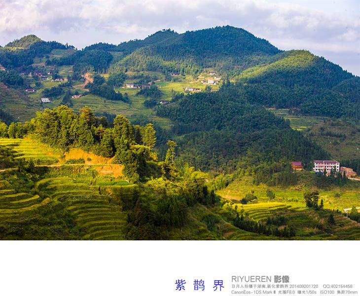 紫鹊界梯田地处湘中丘陵向湘西山区的过渡带,季风气候明显