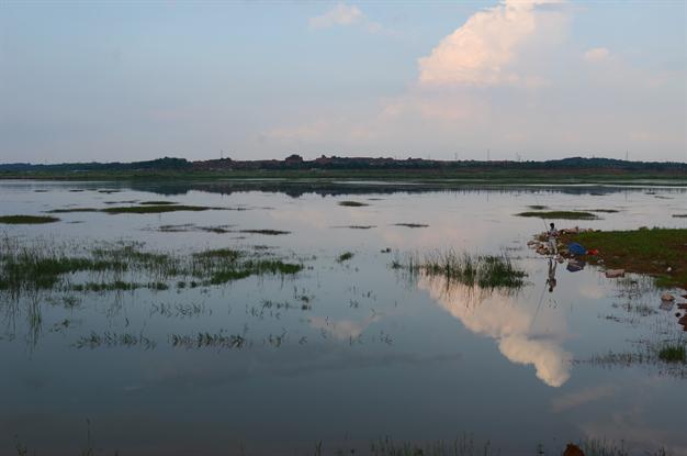 首届松雅湖湿地摄影大赛