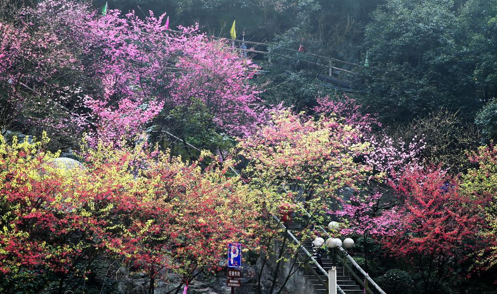 2017-02-18摄于郴州市城郊王仙岭风光.