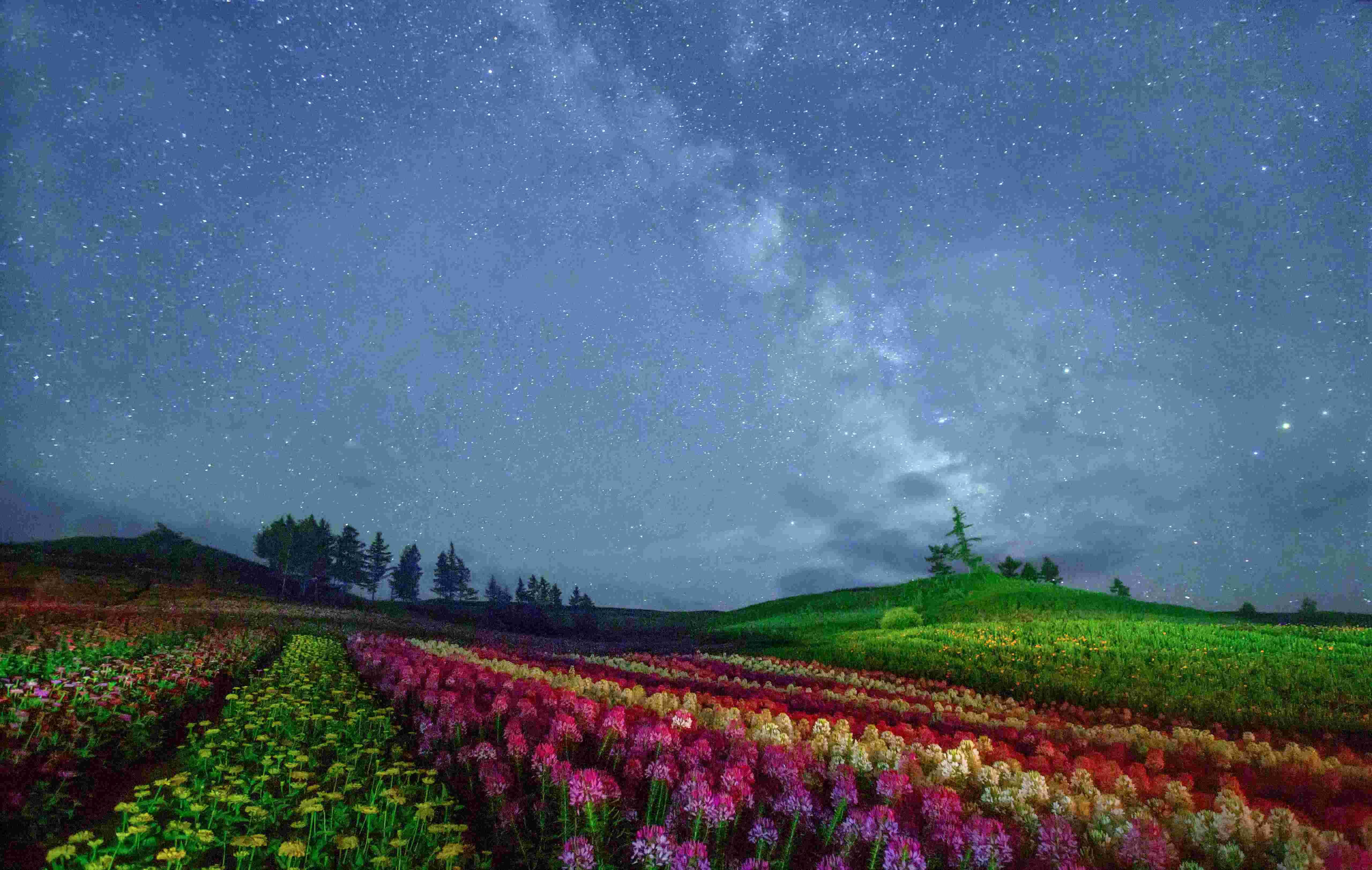 靳进 JIN JIN 吉林省摄影家协会会员 吉林省女摄影家协会会员 HPA/不少文人墨客都对北方的秋色有一种特别的喜爱。郁达夫曾经赞美北国的秋天,与南方的秋相比,很有秋的深味。其实,北方的四季各有各的味道,对摄影人而言,就是一种变换的艺术。 春观山花烂漫,夏游湖光山色,秋赏丹枫白桦,冬览雾凇奇观。一年四季,景色变化分明,各有特色,全都不重样。这个地方就是位于吉林省东南部的桦甸市,是长白山旅游文化带上的一颗明珠,凭借一江秀水,百里桦林,千顷湿地,万山红叶的丰富旅游资源为世人所熟知。   4-5月是拍摄